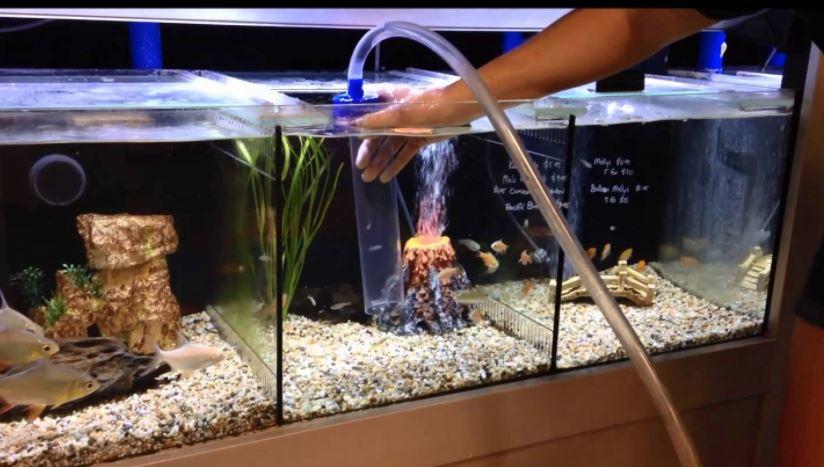 fish tank gravel cleaner reviews