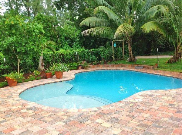 salt chlorinators for swimming pools reviews