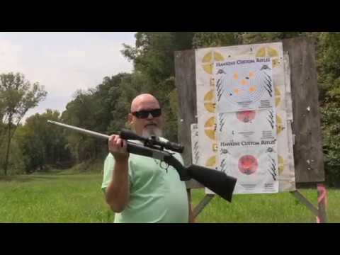 cva hunter 450 bushmaster review