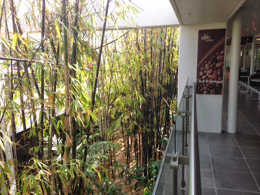 dragonfly cafe eden gardens review