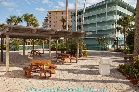 scamander beach hotel motel reviews